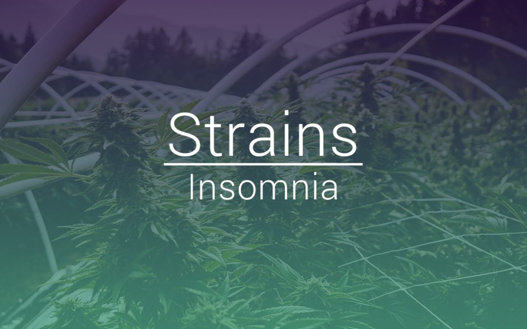 Top 5 Flower Strains Logged For Insomnia